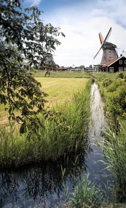 amsterdam-2015-molino